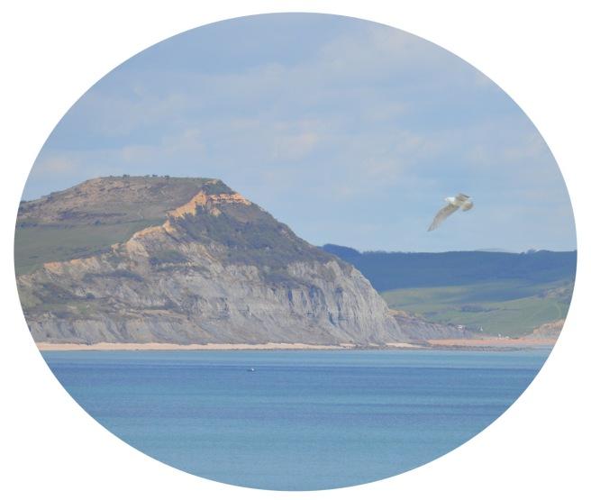 cliff top.jpg